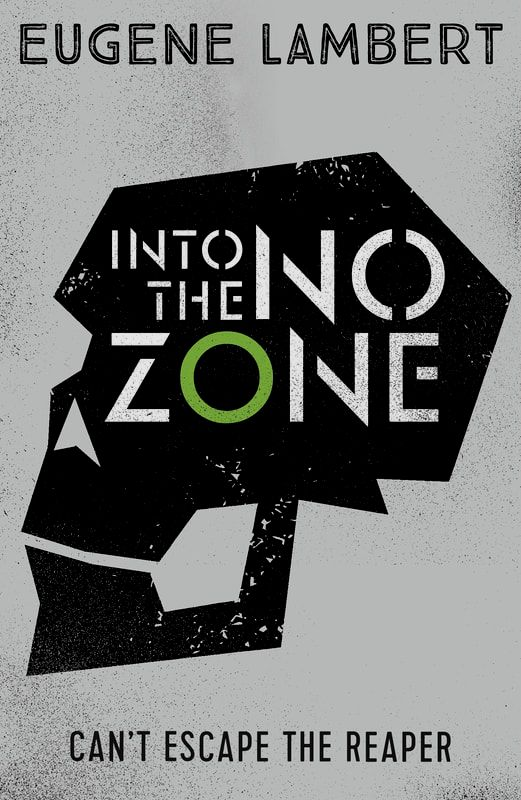 Into The No-Zone book cover